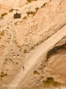 Masada views
